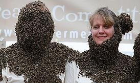 Bee Beard competition.jpg