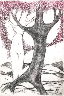 Dancing Trees - Dry Point