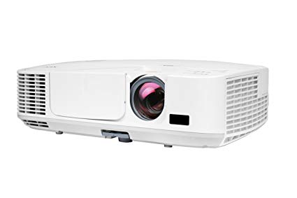 LED Projector ($100)