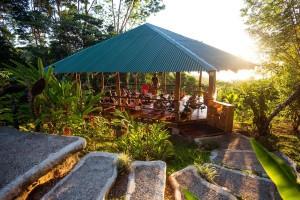 Practice yoga at a Costa Rica Yoga Retreat at Selva Armonia