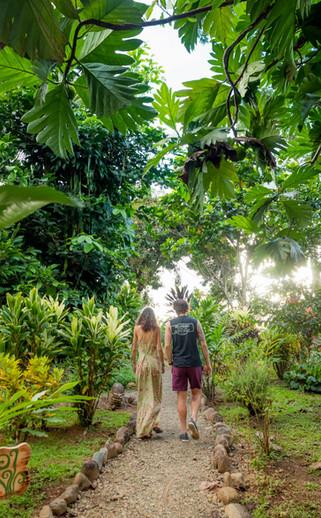 Natural Jungle Trails