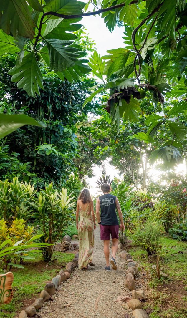 Natural Jungle Trails.jpg