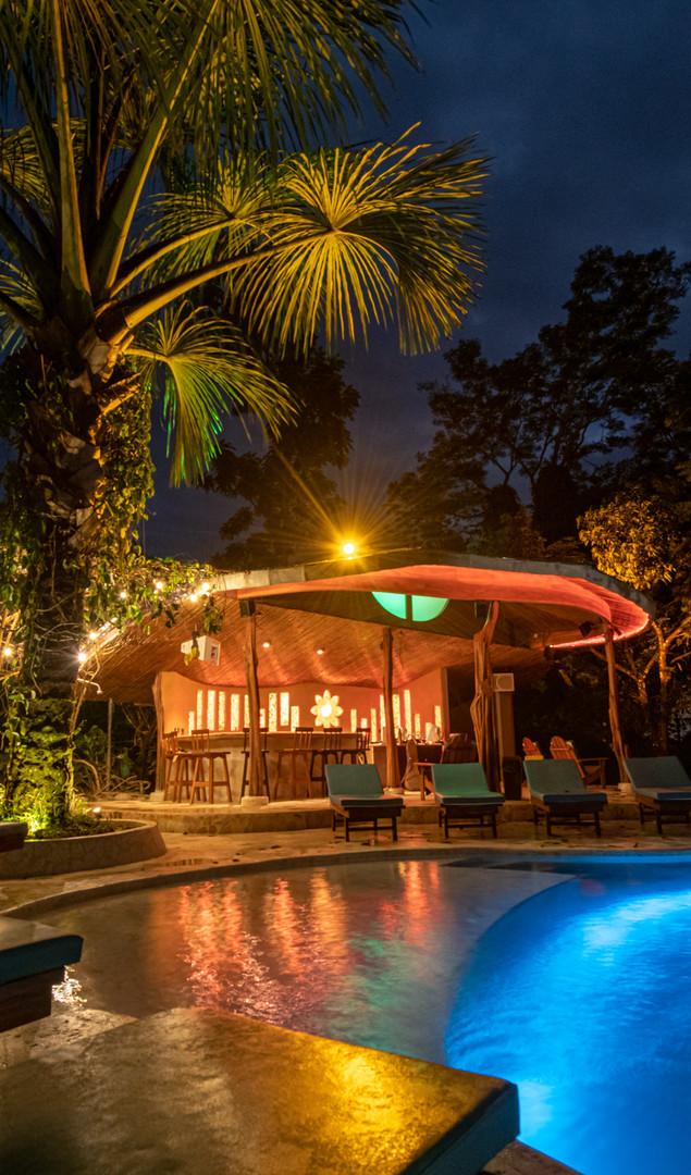 Pool & Elixir Bar