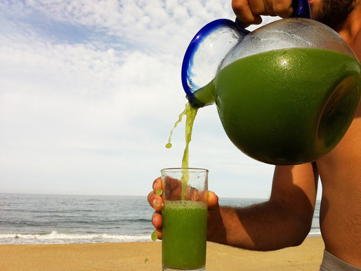 5 Fruits You Should Juice In Costa Rica