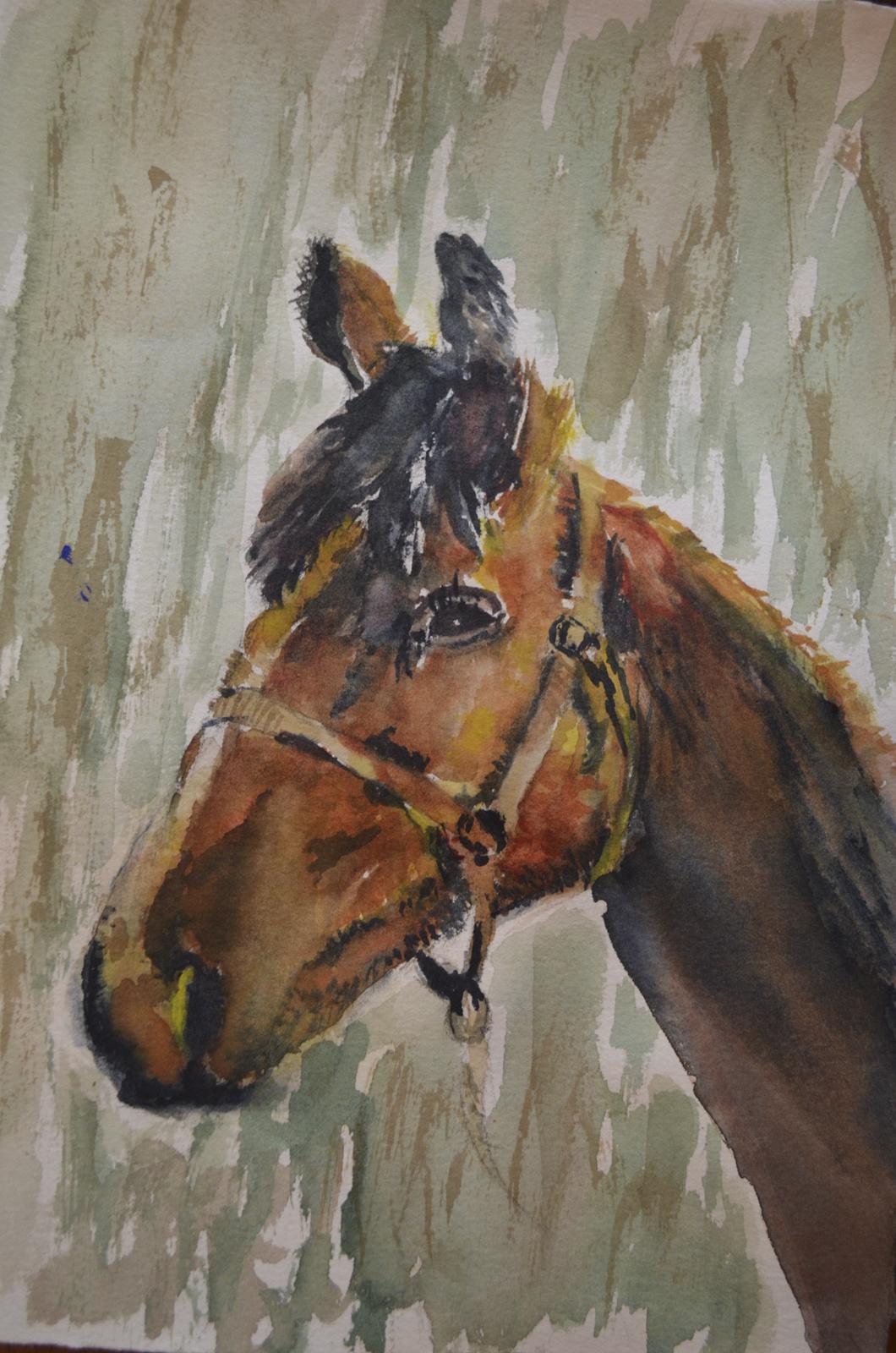Rozlynn's Horse s