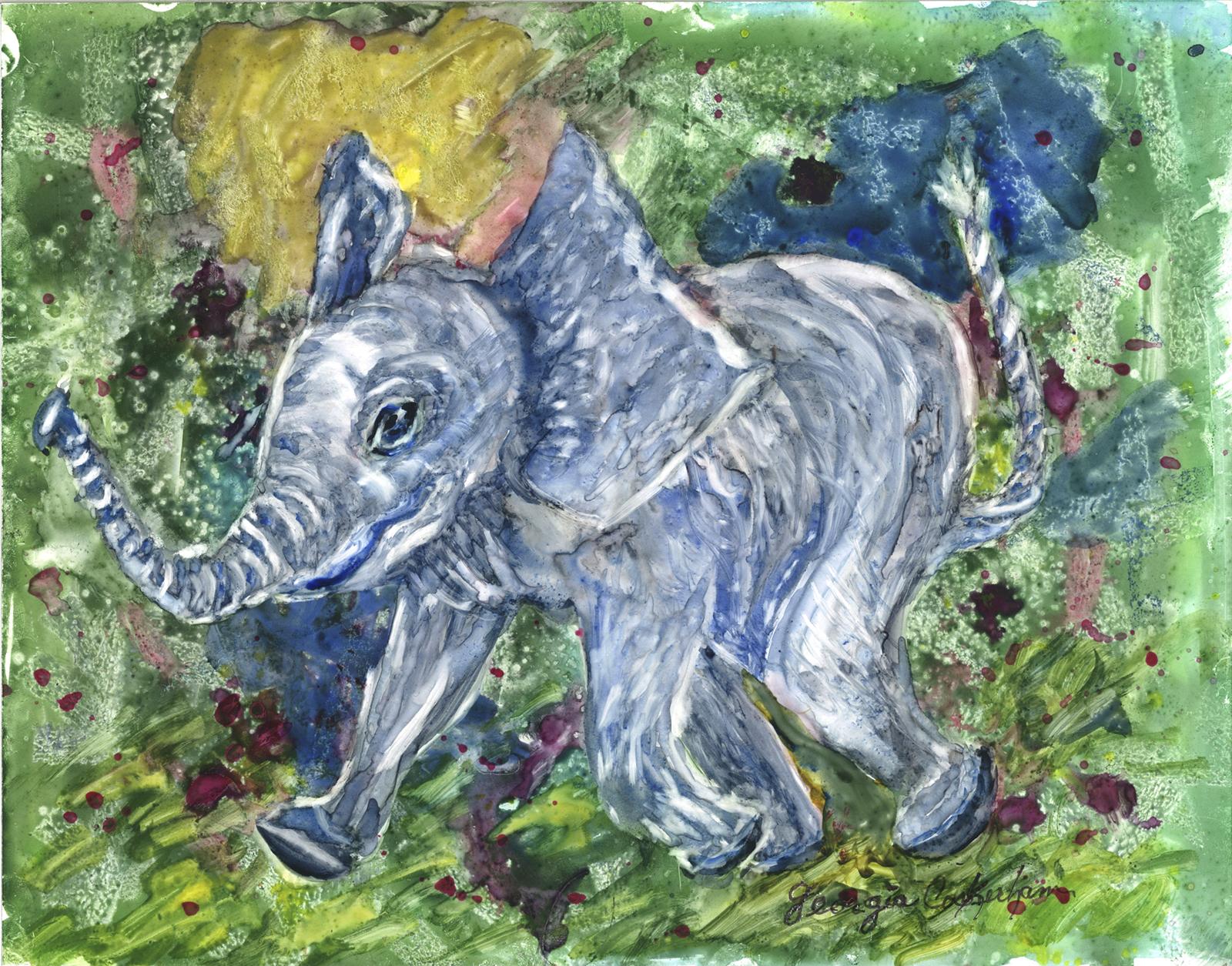 BABY ELEPHANT s