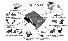 Car engine tune up, overhaul, and ECM service center Manjummel, Ernakulam, Cochin, Edappally, Kakkanadu, Kalamassery, Aluva, Cheranalloor