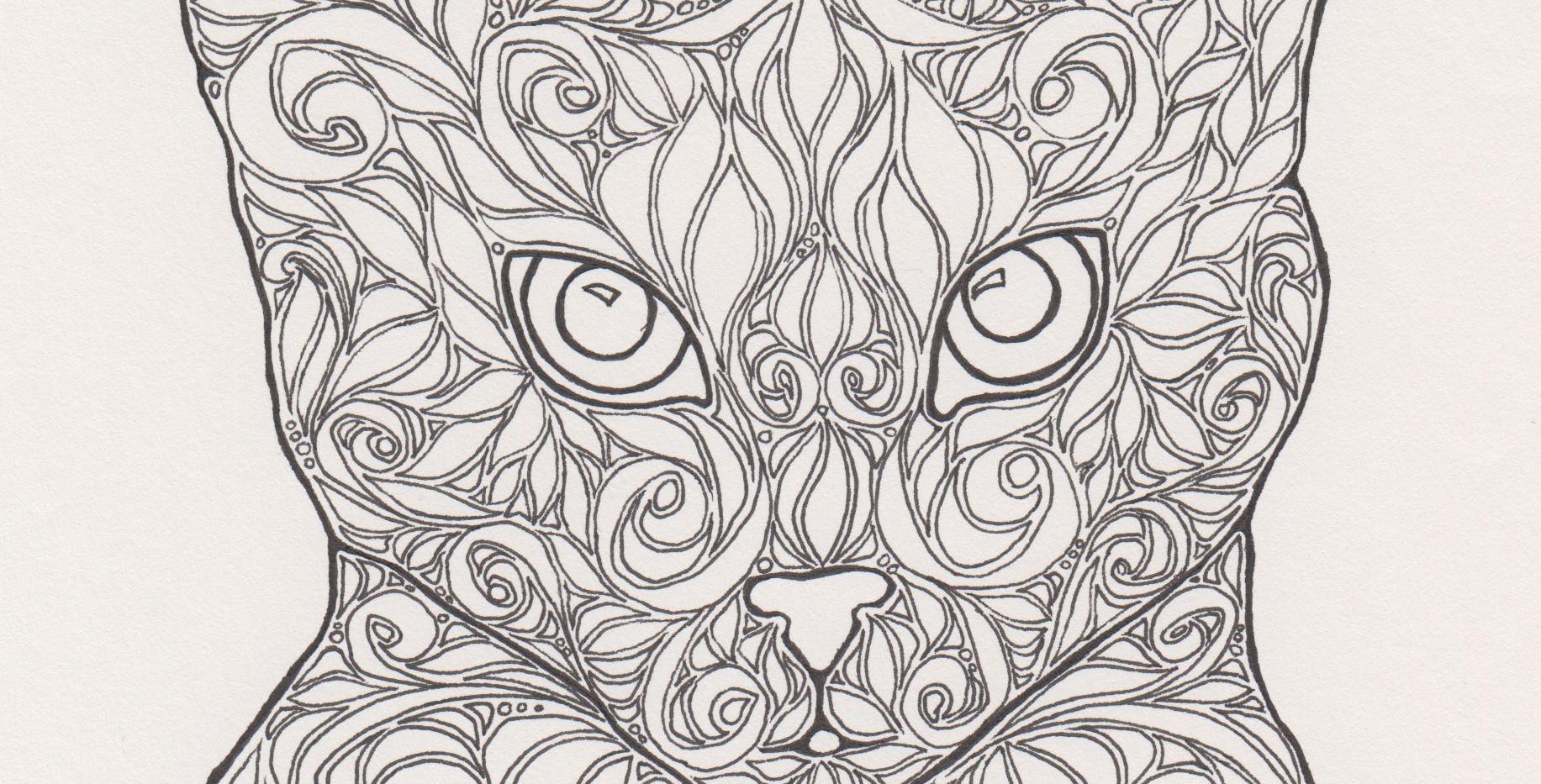Coloring Rascal Cat.jpg