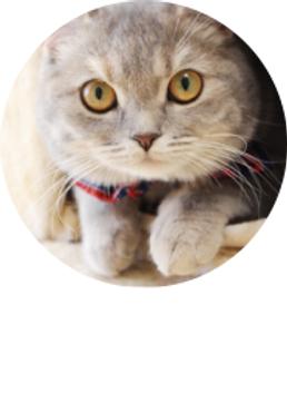 竹山団地ペット共生マンション