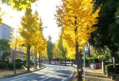 竹山団地最新設備で快適生活の画像