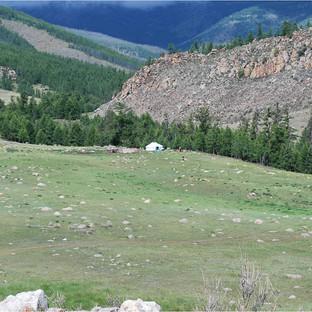 Sommarviste - jurta i Tuva.jpg