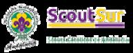 logo-web-scoutsur-60.png