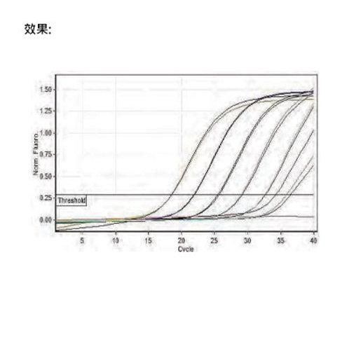 SMB Real-Time PCR Premix