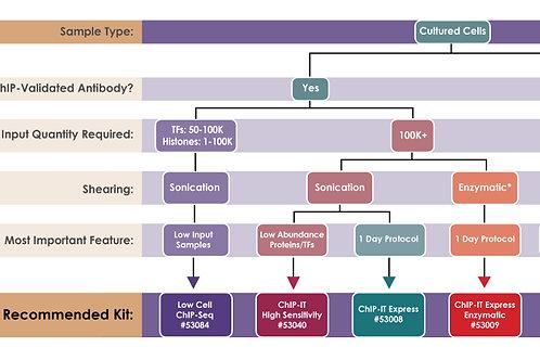 Active Motif ChIP 試劑組選擇指南