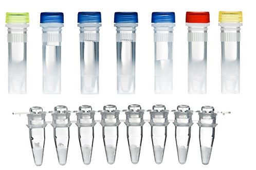 TwistAmp® DNA 擴增基本套組