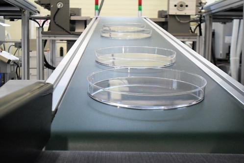 6cm細胞培養皿