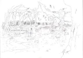 Croquis de l'eau rentrant dans la forêt ors du remplissage du lac réservoir