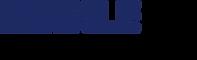 Mahle_logo.svg.png