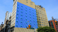 teniolatev newyork bluehouse
