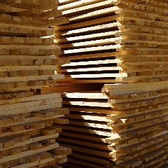 Colorado Saw Mill, Colorado Timber Resources, Colorado Timber, Colorado Timber Building Materials, High Quality Structural Building Lumber, Timber Building Materials, Framing Lumber For Houses, Colorado Framing Lumber, Quality Framing Lumber Near Me, Pallets, Lodge Pole Pine, Spruce, Fir, Premium Timber Materials, 1x4's, 2x4's, 2x6's, Wood Chips, Wood Shavings, Commercial Timber Resources, Commercial Lumber, Commercial Lumber Near Me, Commercial Timber Suppliers, Volume Lumber, Volume Timber, Commercial Lumber Suppliers, Lumber Boards, Bulk Building Lumber, Bulk Timber Suppliers, Construction Timber, Construction Timber Near Me, Timber Framing Boards, Colorado Lodge Pole Pine.