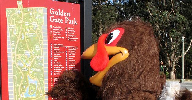 Golden Gate Park Turkey Trot