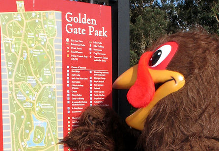 SF Turkey Trot - Golden Gate Park