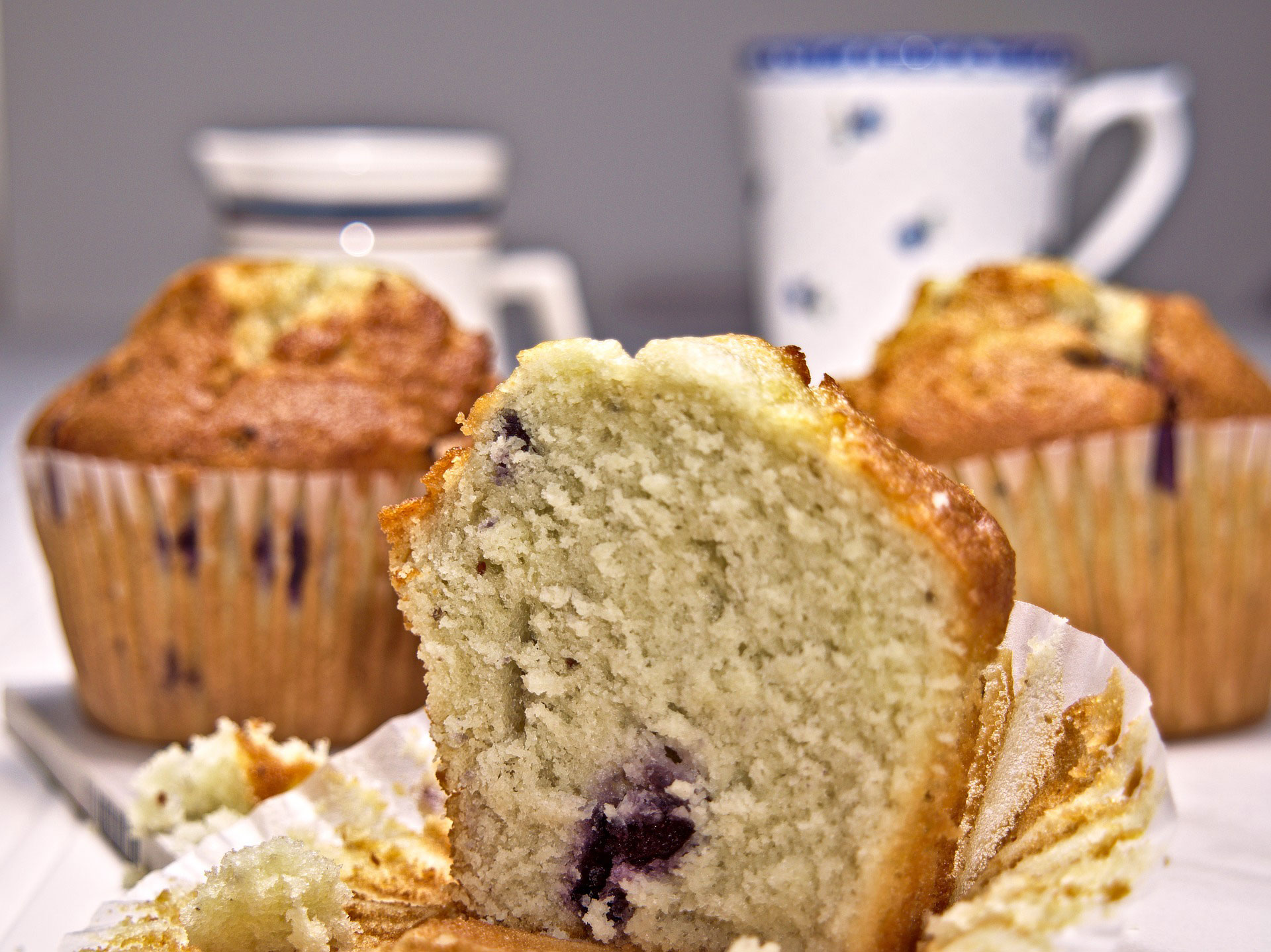 WEB_muffin-3981891_1920