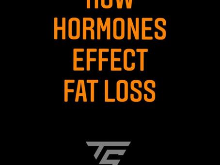 How do hormones effect fat loss?