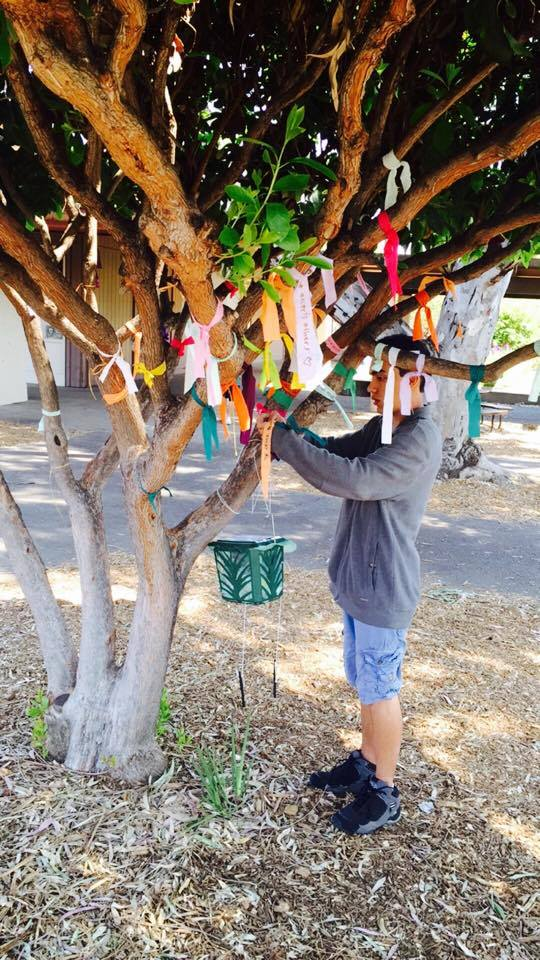 Student putting up wish