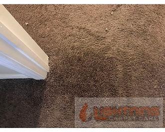 Carpet Repairs