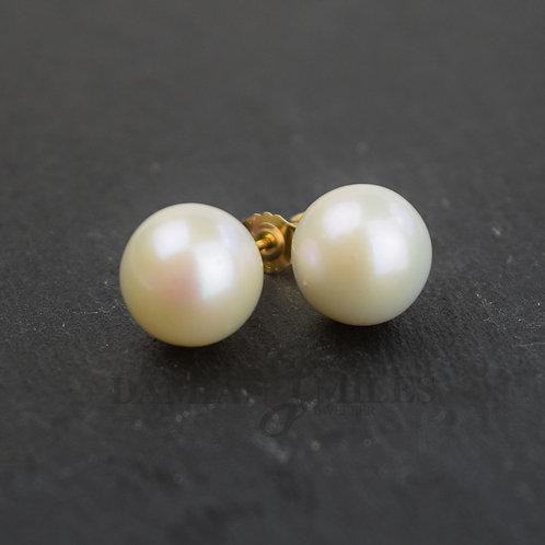 Large Pearl stud Earrings. 11-12mm