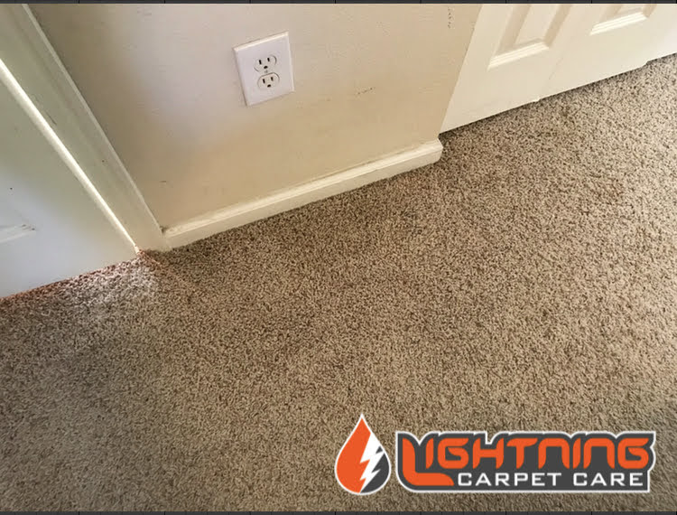 Carpet Repaired (After)
