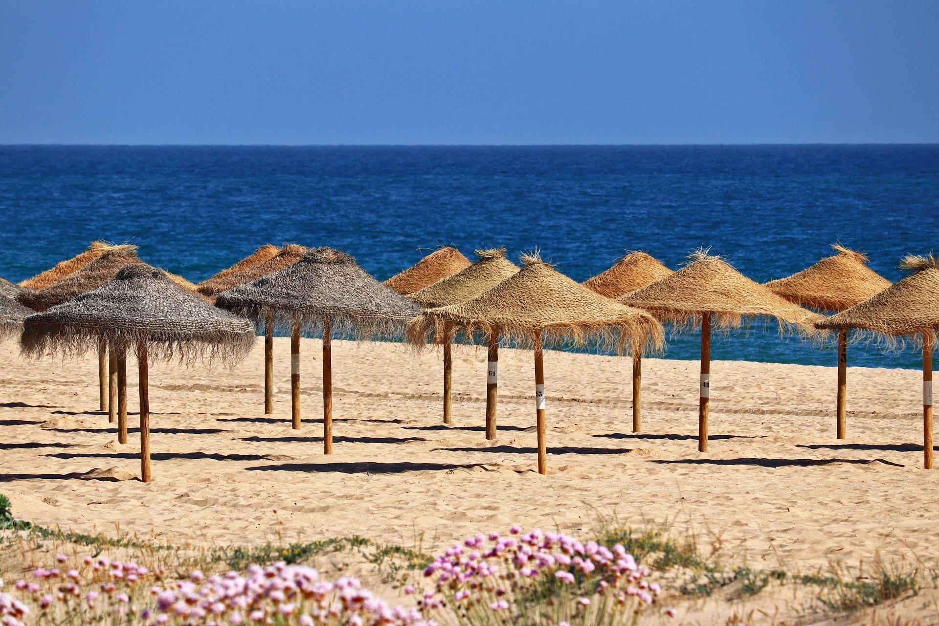 beach-4928423_1920