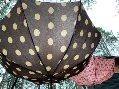 Umbrellas_edited.jpg