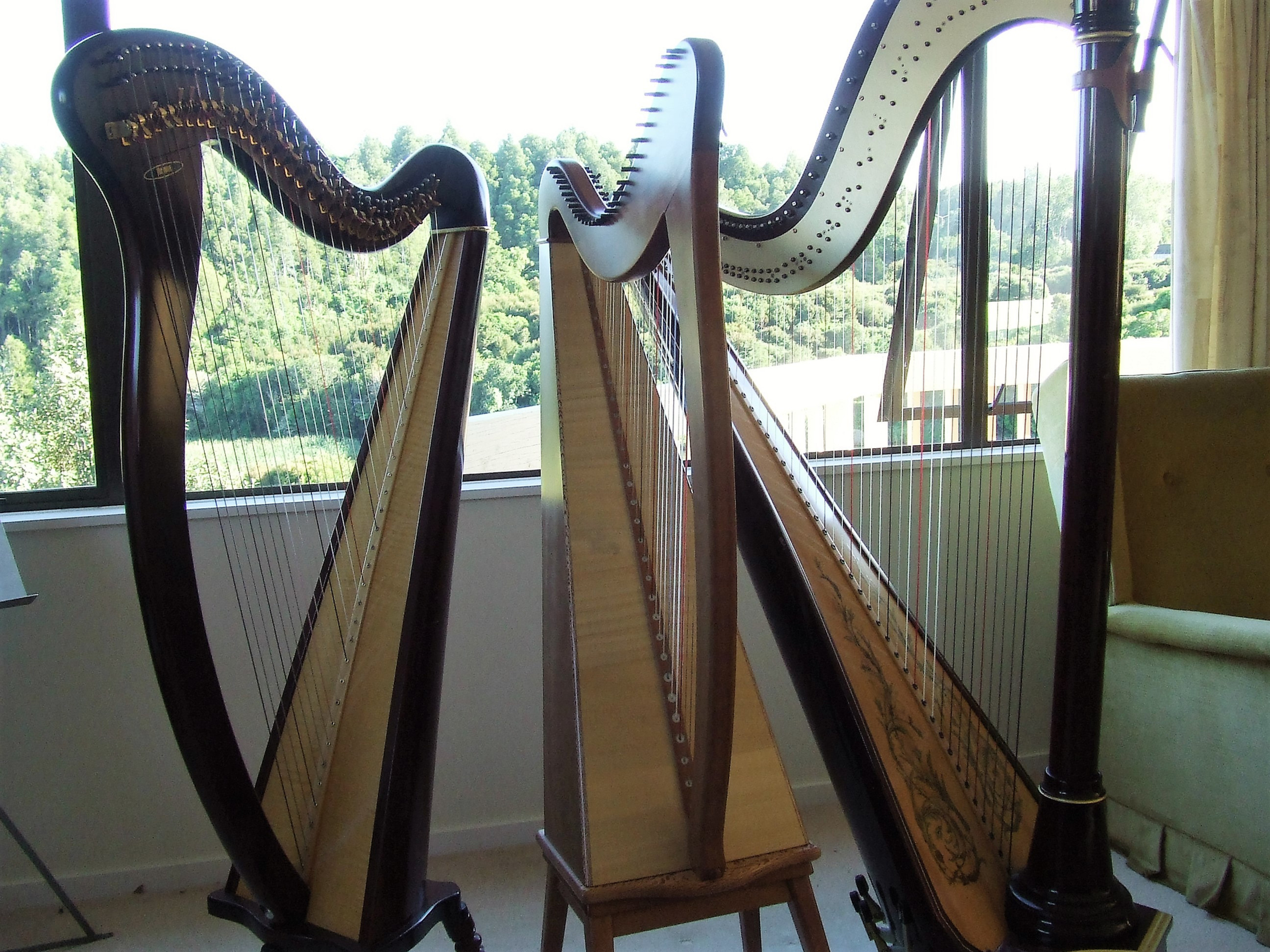 Lever or Pedal Harp