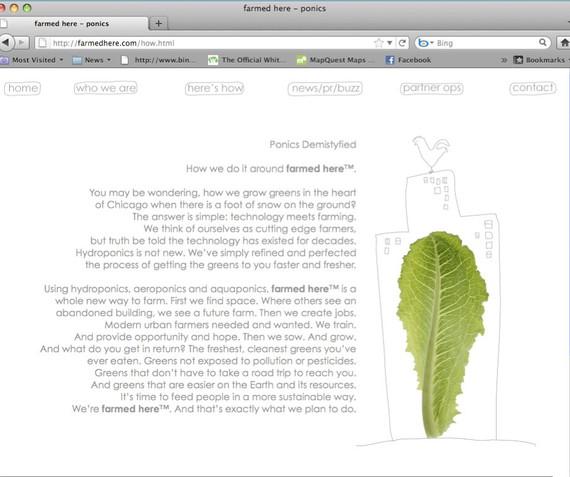 Website Aquaponics