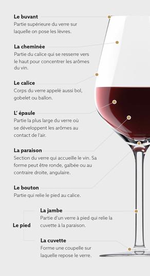Comment bien déguster le vin ?