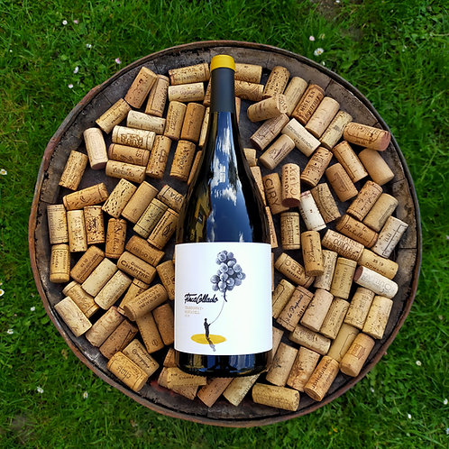 Finca Collado | Chardonnay + Moscatel 2018 (MAGNUM)