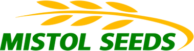 MISTOL-SEEDS-yellow.png