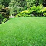 Green_lawn-1160x768.jpg