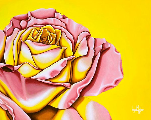 LMFA Flower Art, PEACE ROSE, Photo Print: LIMITED Edition, By Logan Madsen