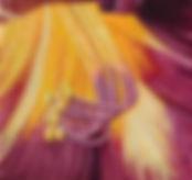 lily giclee web.jpg