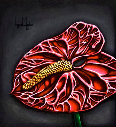 LMFA Flower Art, ANTHURIUM, Photo Print: LIMITED Edition, By Logan Madsen