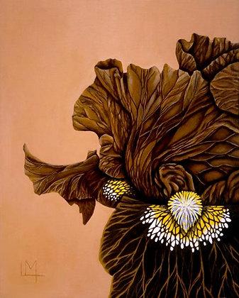 LMFA Flower Art,  NITRO IRIS, Photo Print: OPEN EDITION, By Logan Madsen, 5x7.