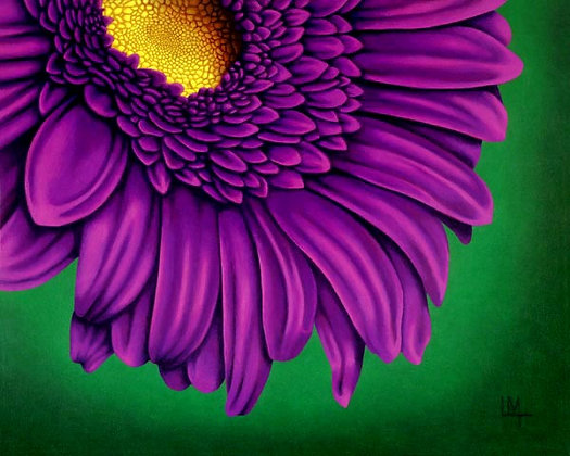 LMFA Flower Art, GERBER DAISY, Photo Print: LIMITED Edition, By Logan Madsen