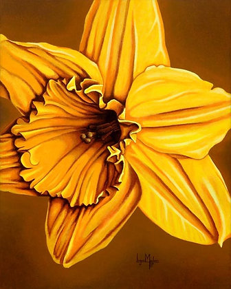 LMFA Flower Art, DAFFODIL, Photo Print: LIMITED Edition, By Logan Madsen