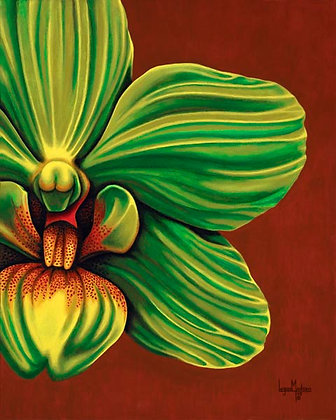 LMFA Flower Art, GREEN ORCHID, Giclee Print: LIMITED Edition, By Logan Madsen