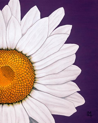 LMFA Flower Art, DAISY, Photo Print: LIMITED Edition, By Logan Madsen