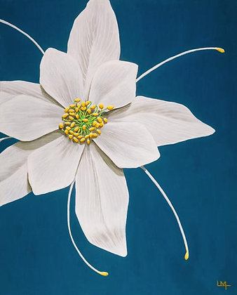 LMFA Flower Art, COLUMBINE, Photo Print: LIMITED Edition, By Logan Madsen