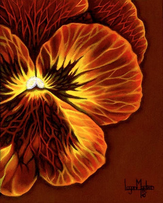 LMFA Flower Art, PANSY, Photo Print: LIMITED Edition, By Logan Madsen